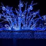 豊洲ららぽーとイルミネーション 2013【見てきたレポ】クリスマス イルミネーション