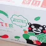 【九州野菜王国】野菜セット 九州の野菜をお取り寄せ!