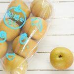 梨といえば千葉県船橋市ふなっしーも応援する船橋の梨を買ってみた!